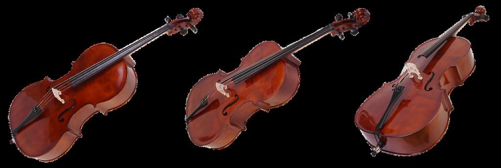 cello-instrumento-México-beatpxm